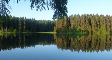 Harz statt Fernweh – wie viel Abenteuer dir heimische Regionen bieten
